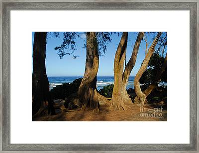Koki Beach Framed Print
