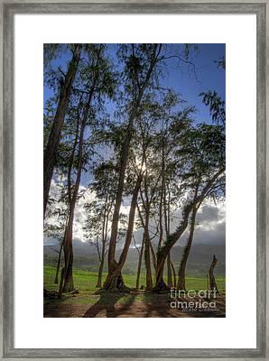 Koki Landscape Framed Print