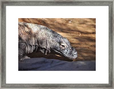 Framed Print featuring the photograph Komodo Kountry by John Knapko