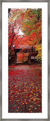 Komyoji Temple  Kyoto Japan Framed Print
