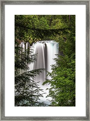 Koosah Falls Framed Print by Marnie Patchett