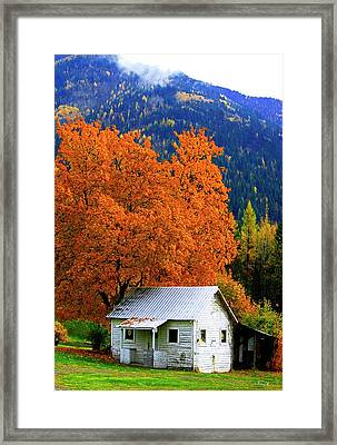 Kootenay Autumn Shed Framed Print