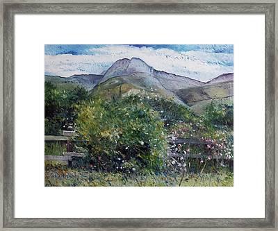 Kopberg Heidelberg Western Cape South Africa Framed Print by Enver Larney