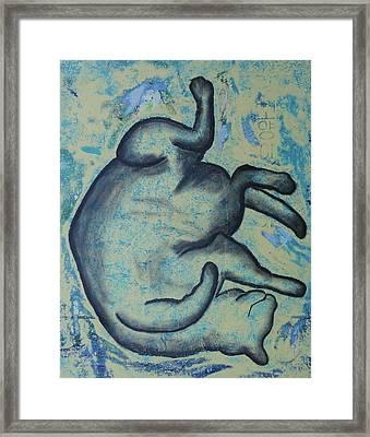 Koyungi Framed Print