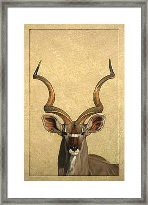 Kudu Framed Print by James W Johnson