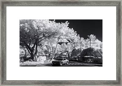 Kuilima Hemi Framed Print by Sean Davey