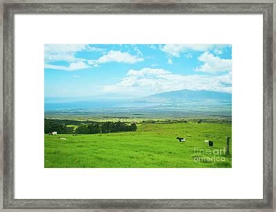Kula Upcountry Maui Hawaii Framed Print by Sharon Mau