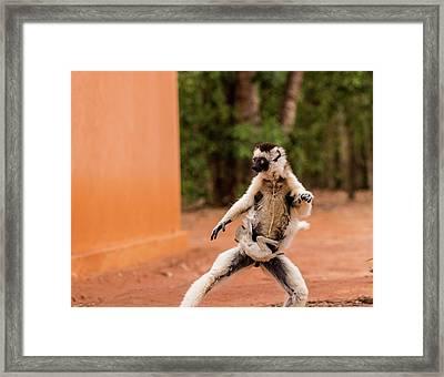 Kung Fu Mom Framed Print