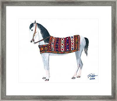 Kurdistan Pony Framed Print