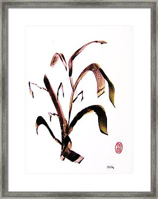 Kusa No Ha Framed Print by Roberto Prusso