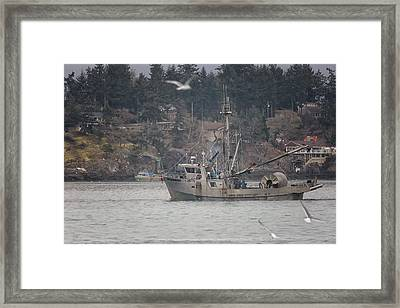 Framed Print featuring the photograph Kwiaahwah by Randy Hall