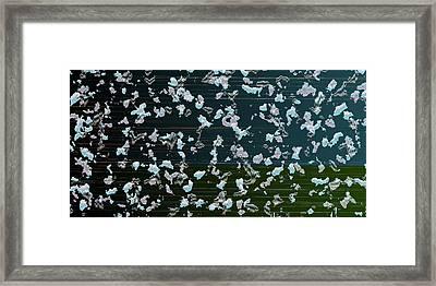 L18-88 Framed Print by Gareth Lewis