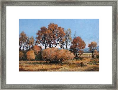 La Center Bottoms Framed Print