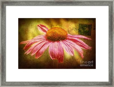 La Fleur Framed Print by Angela Doelling AD DESIGN Photo and PhotoArt