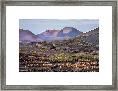 La Geria - Lanzarote Framed Print by Joana Kruse