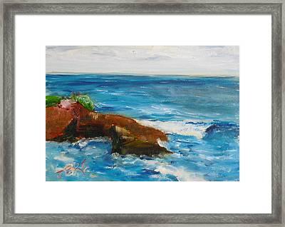 La Jolla Cove 051 Framed Print