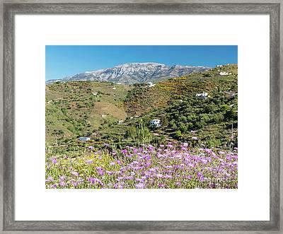 La Maroma In Spring Framed Print by Rod Jones