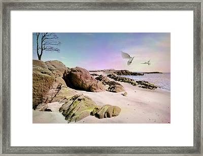 La Mia Luce Guida Framed Print by Diana Angstadt
