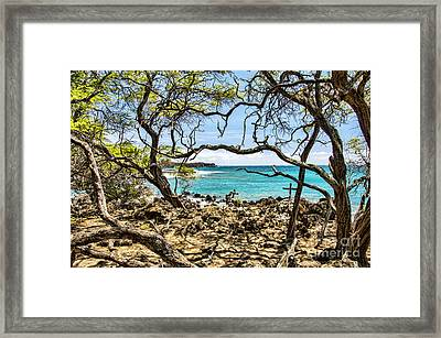 La Perouse Bay Views Framed Print by Keith Ducker
