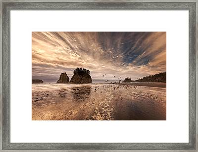 La Push Sunset Framed Print by Ian Good