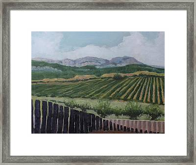 La Rioja Valley Framed Print