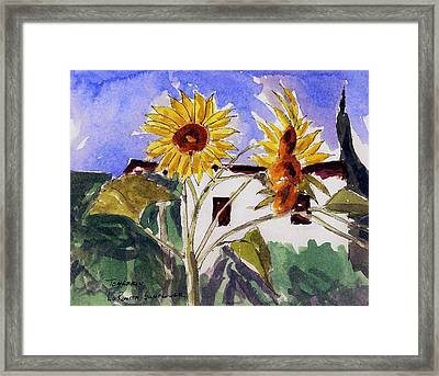 La Romita Sunflowers Framed Print by Tom Herrin
