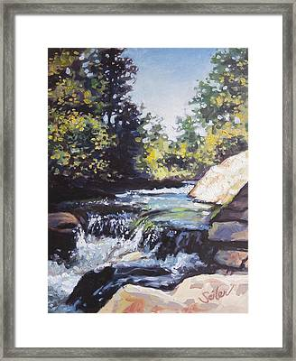 La Salle Falls Framed Print by Larry Seiler