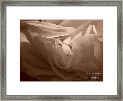 Framed Print featuring the photograph La Vie En Rose by Danica Radman