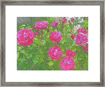 La Vie En Roses Framed Print by Jen White