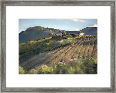La Vierge Winery Framed Print by Christopher Reid