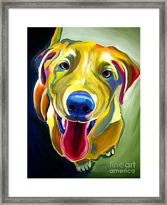 Lab - Spencer Framed Print by Alicia VanNoy Call