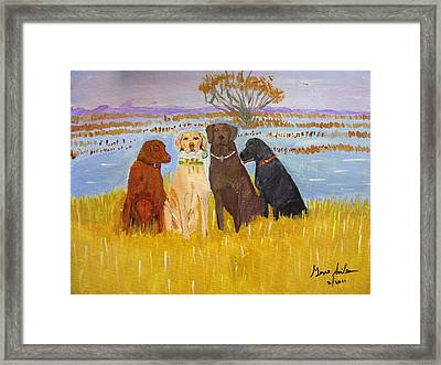 Lab Dogs Framed Print