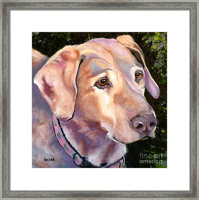Lab One Of A Kind Framed Print by Susan A Becker