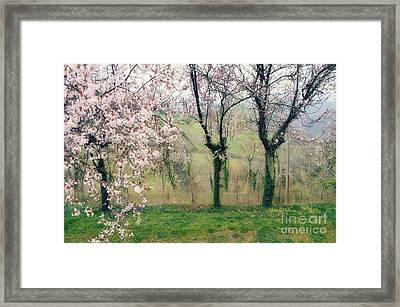 L'abbraccio Di Primavera Framed Print by Eva Maria Nova