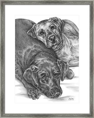Labrador Dogs Nap Time Framed Print by Kelli Swan