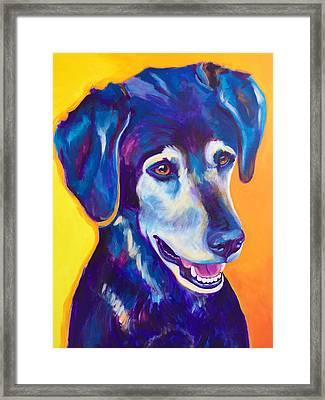 Labrador - Kenobi Framed Print