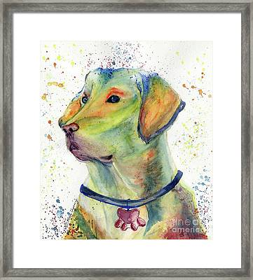 Labrador Retriever Art Framed Print