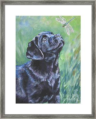Labrador Retriever Pup And Dragonfly Framed Print