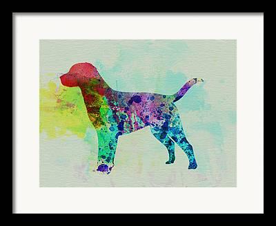 Quite Dog Framed Prints