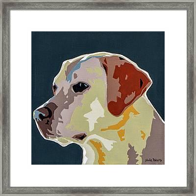 Labrador Framed Print by Slade Roberts