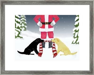 Labs Tug Santa Scarf Framed Print