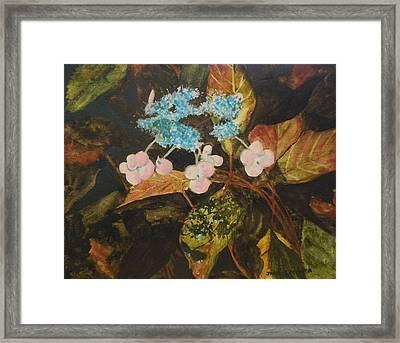 Lace Cap 2 Framed Print by Jean Blackmer
