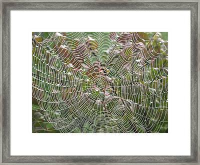 Lace Framed Print by Linda Raphael