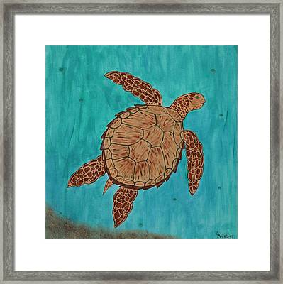 Lacey's Sea Turtle Framed Print