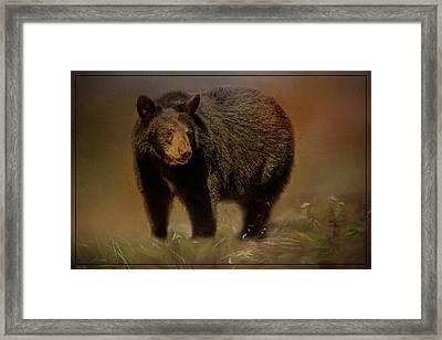 Black Bear In The Fall Framed Print