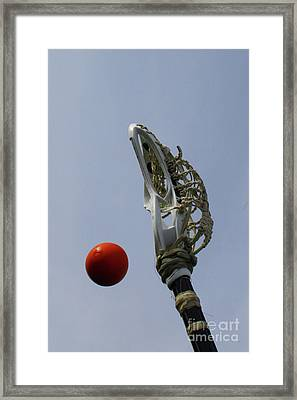 Lacrosse Stick And Ball Framed Print