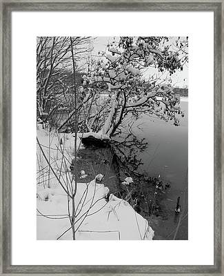 Laden With Winter Framed Print by Scott Kingery