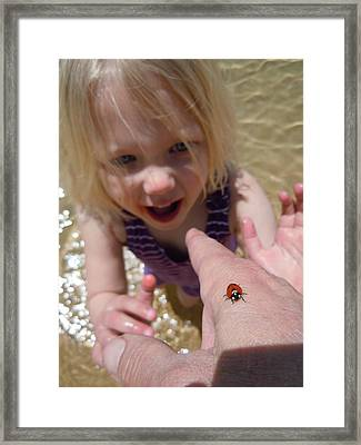Framed Print featuring the photograph Lady Bug  by Dan Whittemore