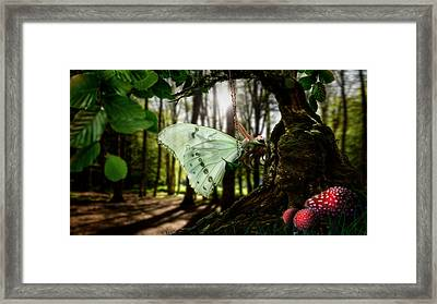 Lady Butterfly Framed Print