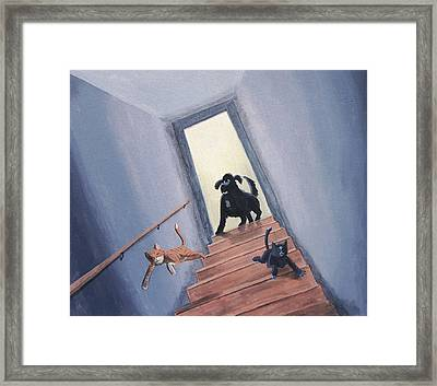 Lady Chases The Cats Down The Stairs Framed Print